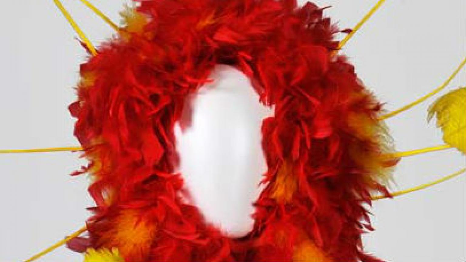 Red and yellow feathered headpiece from 'The Adventures of Priscilla, Queen of the Desert'.