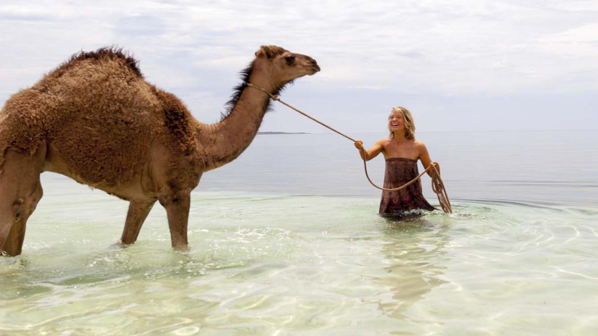Mia Wasikowska leads a camel in the ocean in a scene from the film Tracks
